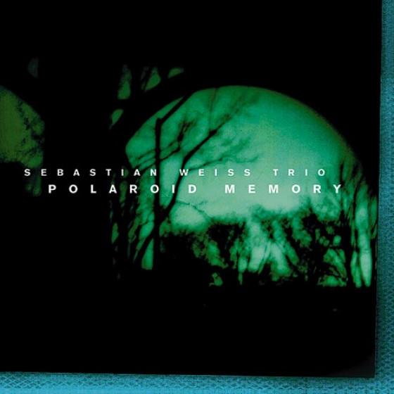 Polaroid Memory