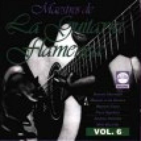 Maestros De La Guitarra Flamenca Vol.6
