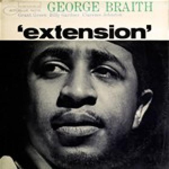 Extension  (Vinyl)