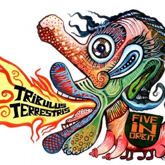 Tribulus Terrestris (Digipack)